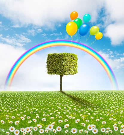 Fantasy landscape tree, daisy meadow with rainbow