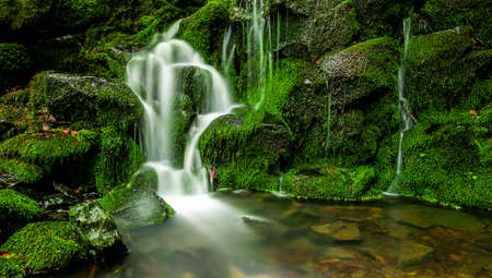 Green waterfall with moss in a forest