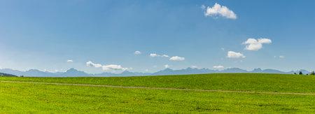 Alpine panorama in front of green meadow in Allgäu region Zdjęcie Seryjne