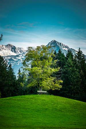 Landscape near Oberstdorf in Allgäu with view of Allgäu high alps Zdjęcie Seryjne