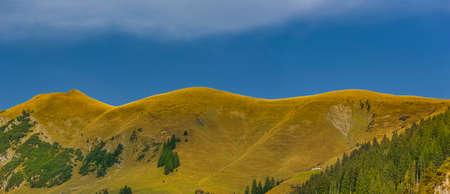 Mountain ridge with alpine meadows in Allgäu region