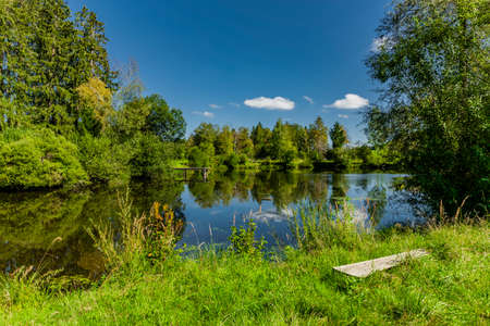 Natural pond in Allgäu with grass on the shore