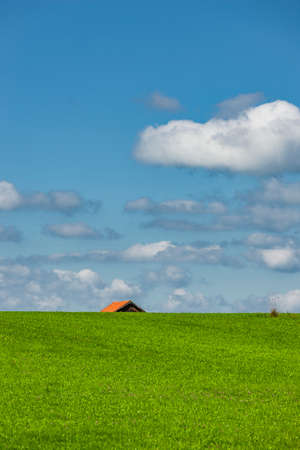 Allgäu landscape with farmhouse in summer