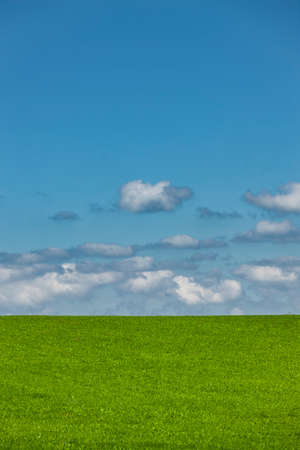 Green meadow with blue sky and white clouds Фото со стока