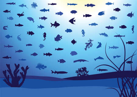 Fish silhouettes underwater. Vector