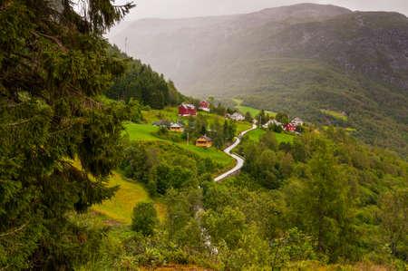 scandinavian peninsula: Small village of Naeroydalen valley - spruce left foreground, Norway, Scandinavia