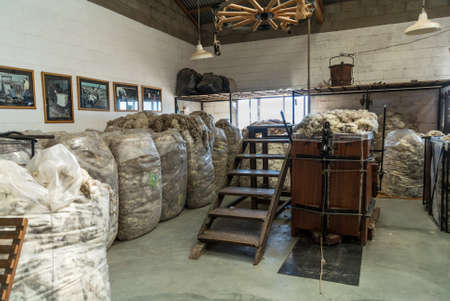sheep wool: Puerto Madryn, Argentina - December 13, 2012: Interior of the Raw sheep Wool Warehouse on the sheep farm near Puerto Madryn, Patagonia, Argentina. The raising of sheep and the wool industry is a major source of income in the rural countryside of Argentina Editorial