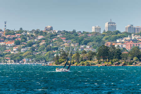 shark bay: Sydney, Australia - November 9, 2014: Yacht boat sailing in the Sydney Harbour with Shark Island in the foreground, Rose Bay and houses in the background at Sydney, Australia. Editorial