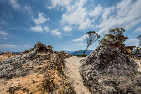nsw: Trail in the Lincolns Rock near Wentworth Falls in the Blue Mountains, NSW, Australia Stock Photo