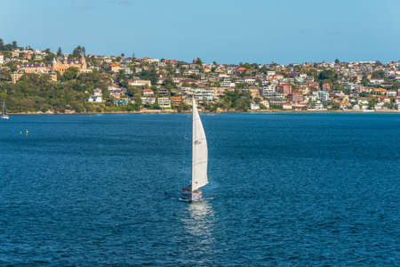 residential housing: Sydney, Australia - November 12, 2014: Sailing boat and residential housing in Rose Bay, Sydney, New South Wales, Australia. Rose Bay is a harbourside eastern suburb of Sydney 7 kilometres east of the Sydney central business district. Editorial