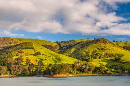 greenness: New Zealand coastal landscape - A happy sunny day at Otago Region Southern island New Zealand