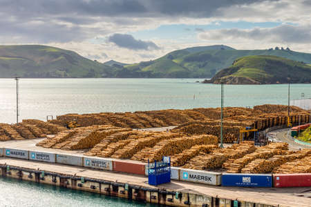 weald: Port Chalmers, New Zealand - November 15, 2014: Timber is ready for shipping at a dock, Port Chalmers, Dunedin, Otago region, South Island, New Zealand.