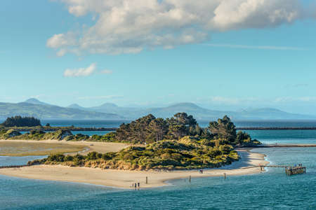 sand harbor: Gorse, Otago Harbour entrance, Dunedin, Otago, South Island, New Zealand. The sand dune and the Aramoana mole located at the mouth of the Otago Harbor. This area is a protected Wildlife Sanctuary.