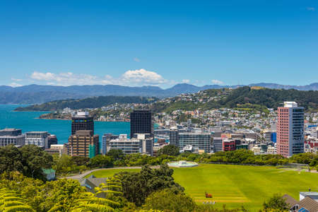 cricket field: Wellington City panorama, with Cricket Field in the foreground, from the top of the Cable Car towards Mt. Victoria, North Island New Zealand.