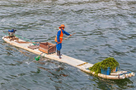 algal: Yangshuo, China - October 20, 2013: Worker are collecting and removing algae on his bamboo raft from the Li River near Yangshuo, China. Editorial