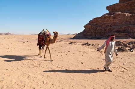 pack animal: Wadi Rum, Jordan - November 20, 2010: Camel and arab handler (Bedouin man) walk in the desert landscape at November 20, 2010 in the valley of Wadi Rum, Jordan Editorial