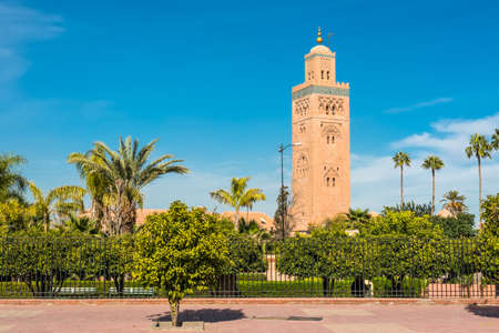 dwarfs: Gardens flank the Koutoubia Mosque (Kutubiyya Mosque) - the largest mosque in Marrakesh, Morocco. The minaret tower, which dwarfs the nearby palm trees, includes a secondary tower, a dome, a spire of four orbs, and a flag pole.