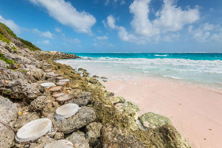 The path to the tropical beach on the Caribbean island - Crane Beach, Barbados. The beach has been named as one of the ten best beaches in the world and it has the pink-tinged sands.