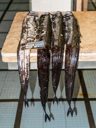 Funchal, Madeira, Portugal - 10. Dezember 2016: Schwarzer Scheidefisch (espada auf portugiesisch) im Fischmarkt von Funchal, Madeira, Portugal. Fisch aus dem Atlantik.