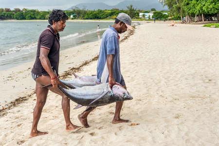 Tamarin, Mauritius - December 10, 2015: Fishermen carry two big tuna fish on the beach of Tamarin Bay in Mauritius.