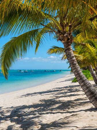 Palm Beach Resort - vacation at perfect tropical white sand Le Morne beach in Mauritius Island Stock Photo
