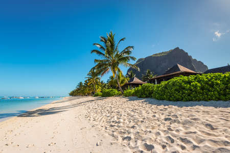 le: Le Morne, Mauritius - December 11, 2015: Amazing white beaches of Mauritius island. Tropical vacation in Le Morne Beach, Mauritius. Le Morne Brabant mountain in the background. Editorial