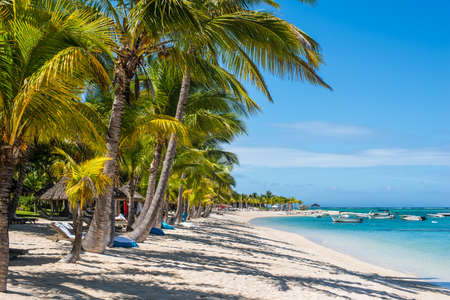 Le Morne, Mauritius - December 11, 2015: People are relaxing on the tropical Le Morne beach with coconut palms, one of the finest beaches in Mauritius.