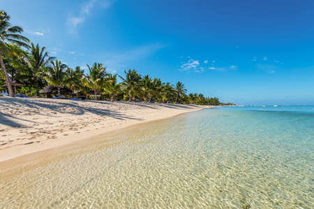 People are relaxing on the tropical beach with coconut palms, one of the finest beaches in Mauritius. Shadow on sand.