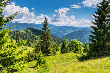 Summer landscape in mountains and the dark blue sky with clouds. Carpathian, Ukraine, Europe.