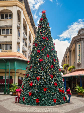 Port Louis, Mauritius - December 25, 2015: Christmas tree in the tropics, on the waterfront of Port Louis, capital of Mauritius. Editorial