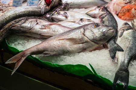 Raw Fresh fish (Gilt-head bream  or dorada) for sale in the fish market Stock Photo