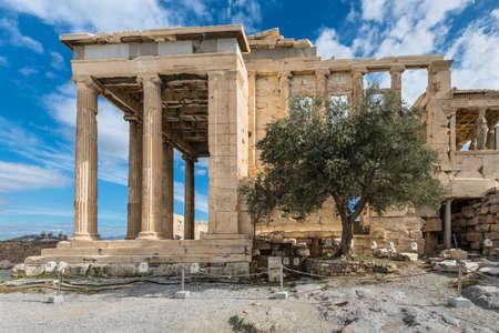 Athen, Griechenland - 1. November 2017: Athenas Olivenbaum im antiken Erechtheion-Tempel, einem schönen Strukturteil der Akropolis in Athen, Griechenland. Editorial