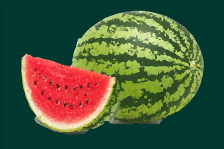which: illustration which depicts a large and ripe watermelon