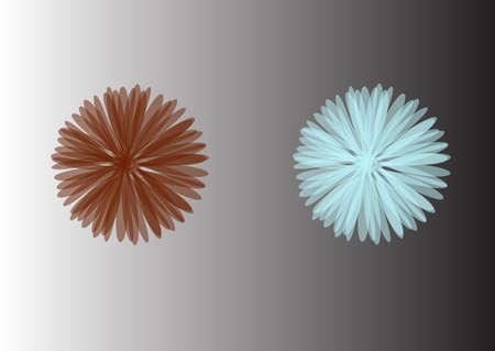 aster flower: Aster. Blue flower, Spring flower. Isolated on white background