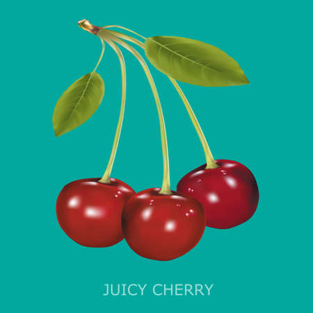 palatable: Juicy cherry on a blue background. Vector illustration
