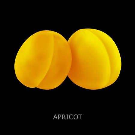 close up food: Juicy apricot on a black background. Vector illustration Illustration