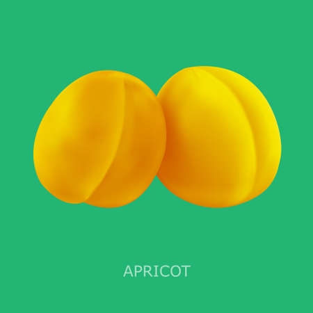 cutouts: Juicy apricot on a green background. Vector illustration