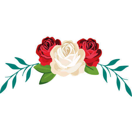 The ornament of white and red roses on a white background. Vector illustration