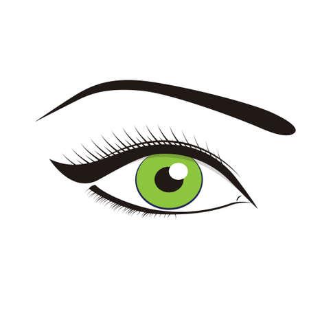 green eyes: Beautiful green eyes on a white background. Vector illustration Illustration