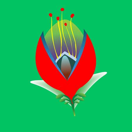 Spring flower on a green background. Vector illustration Illustration