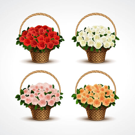 gift basket: Set Baskets of Roses Isolated