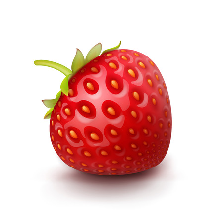 strawberry: Vector Strawberry Isolated
