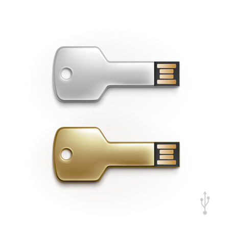 computer key: USB Key Flash Drive Stick Memory Vector Isolated