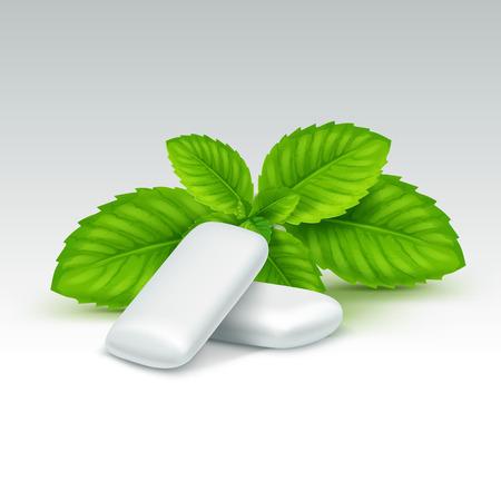 menta: Goma de mascar con hojas de menta fresca aisladas sobre fondo blanco Vectores