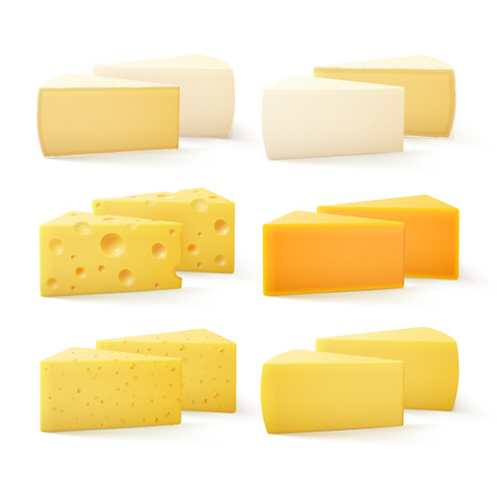 Vector Set of Triangular Pieces of Various Kind of Cheese Swiss Cheddar Bri Parmesan Camembert Close up Isolated on White Background Illustration