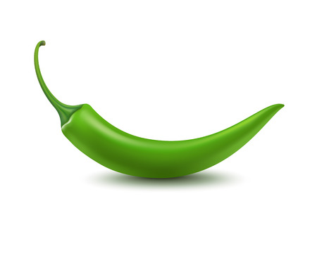 green pepper: Vector Green Hot Chili Pepper Isolated on White Background