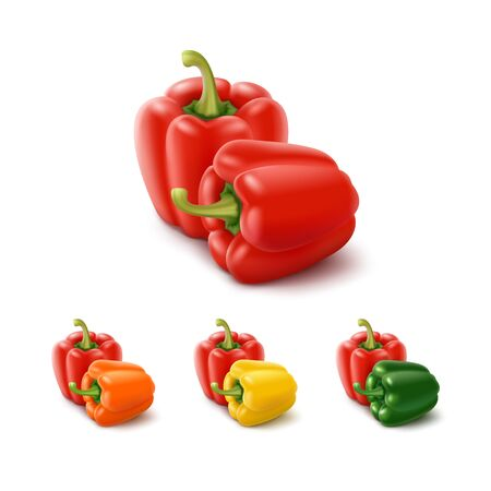 bell pepper: Vector Set of Colored Yellow Green Orange and Red Sweet Bulgarian Bell Peppers, Paprika Isolated on White Background Illustration