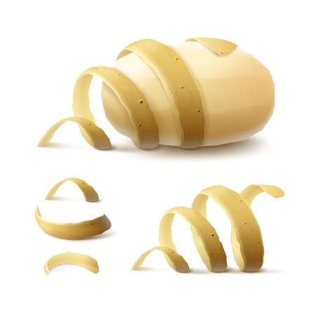 Potato Vector Set of Raw New Yellow pelées entières avec le zeste torsadée Gros plan isolé sur fond blanc Vecteurs