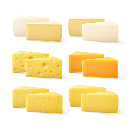gouda: Vector Set of Triangular Pieces of Various Kind of Cheese Swiss Cheddar Bri Parmesan Camembert Close up Isolated on White Background Illustration