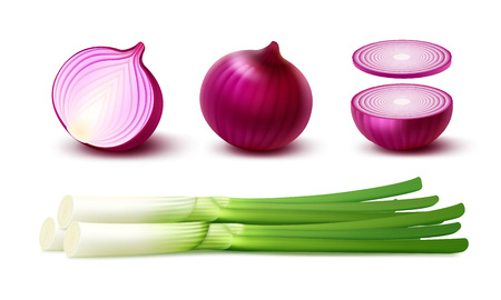 Vector Set of Fresh Whole and Sliced Red Onion Bulbs with Green Onions Close up Isolated on White Background Vectores